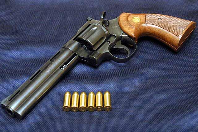 X GUNの画像 p1_21
